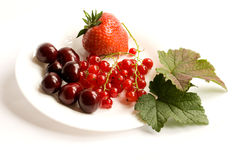 Plate of berries Stock Images