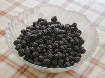 Plate with berries black blackberries. Fruits berries on the table Stock Photos