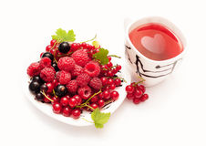 Plate with berries and a cup of red tea Stock Photos