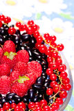 Plate with berries of raspberry, currant, bilberry Royalty Free Stock Image