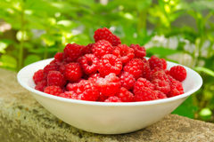 A plate with berries ripe raspberry. White ceramic plate up to the top filled with berries ripe raspberry lies on a stone slab Stock Image
