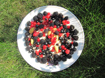 Plate with berries. Summertime Royalty Free Stock Photo