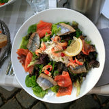 Plate of big salad with salmon and herring Royalty Free Stock Photos