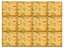 Plate of biscuits Stock Images