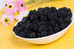 Plate of blackberries. On the table Royalty Free Stock Photography