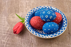 Plate with blue and red Easter eggs and tulip flower on wooden t Royalty Free Stock Image