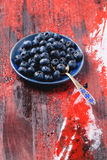Plate of blueberries Royalty Free Stock Photos