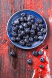 Plate of blueberries Royalty Free Stock Photography