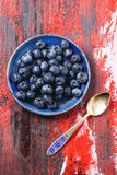 Plate of blueberries Stock Image