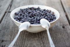 Plate of blueberries. Is very healthy food for everyone. It is big source of vitamines Stock Photos