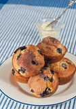 Plate of blueberry muffins on white plate Stock Photo