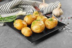Plate with boiled potatoes Stock Image