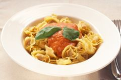 Plate of bolognese tortelloni Stock Images