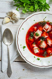 Plate of borscht with dumplings Stock Photography