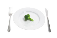 Plate with Broccoli Royalty Free Stock Images