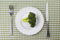 Plate of broccoli. Royalty Free Stock Photo