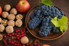 Plate with bunches of grapes surrounded by autumn fruits stock photo