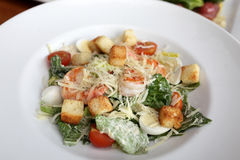 Plate with Caesar salad Royalty Free Stock Image