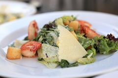 Plate of Caesar salad with shrimps Stock Image