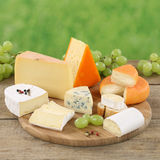 Plate with Camembert, Gouda and Swiss cheese Stock Photography