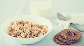 Plate with cereal porridge for breakfast royalty free stock photos