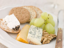 Plate of Cheese and Biscuits Royalty Free Stock Photography