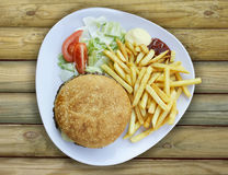 Plate with Cheeseburger french fries and sauces Royalty Free Stock Photos
