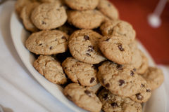 Plate of chocolate chip cookies Royalty Free Stock Photo