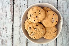 Plate of chocolate chip cookies on rustic white wood Royalty Free Stock Images