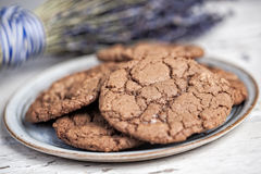 Plate of chocolate cookies Stock Image