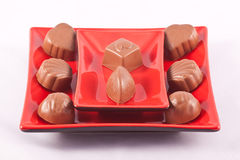 Plate of Chocolates. A plate of luxury chocolates on a white background Royalty Free Stock Image