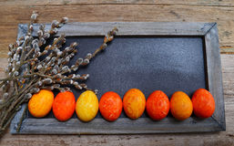 Plate of colorful Easter eggs wooden background Stock Photography