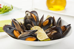 Plate of coocked mussels with lemon isolated over white Royalty Free Stock Photo