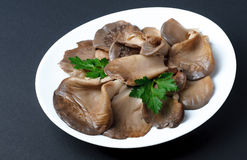 Plate of cooked ear mushrooms on dark background Stock Images