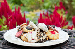 Plate of cookies in the garden Royalty Free Stock Photography