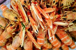 Plate of crayfish claws. Closeup of plate with boild crayfish Royalty Free Stock Photography