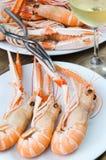 Plate of crayfish Stock Photos