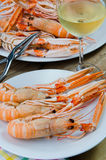 Plate of crayfish Stock Images
