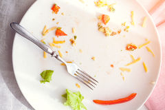 Plate with crumbs food and used fork Royalty Free Stock Photo
