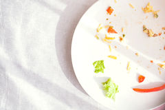 Plate with crumbs food and used fork Royalty Free Stock Images