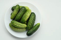 A plate of cucumbers. On the white background, healthy food royalty free stock image