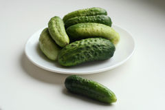 A plate of cucumbers. On the white background, healthy food royalty free stock photography