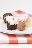 Plate of cupcakes and other desserts Royalty Free Stock Photography