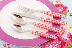 Plate with cutlery. Colorful plate with checkered cutlery on roses Royalty Free Stock Image