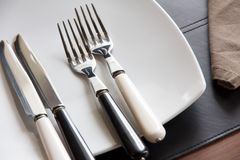 Plate and cutlery Royalty Free Stock Images