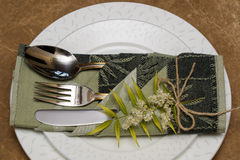 Plate and cutlery. Royalty Free Stock Photography