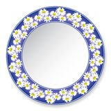 Plate with daisies Stock Images