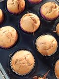 Homemade banana muffins in the oven. A plate of delicious homemade banana muffins in the oven ready to bake stock images