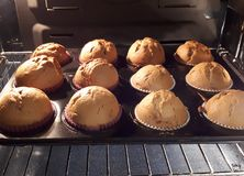 Homemade banana muffins in the oven. A plate of delicious homemade banana muffins in the oven ready to bake royalty free stock images