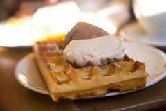 Plate of delicious ice cream on the waffle Royalty Free Stock Photos